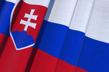 Slovakia Waving Flag 3D