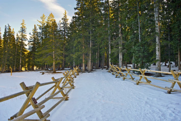 Snowy Colorado Trail