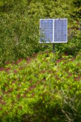 Solar Energy in Garden