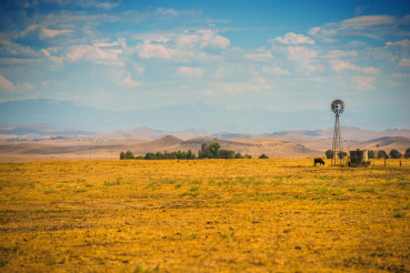 Southern California Farmland