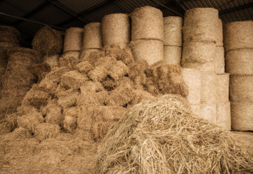 Stored Hay For Animals