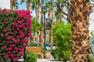 Summer in La Quinta, CA