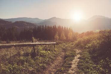 Sunny Carpathian Trail