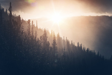 Sunny Winter Hills