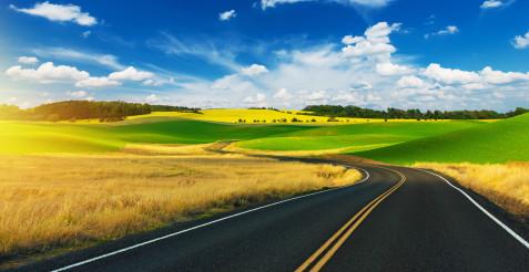 Scenic Summer Road Drive