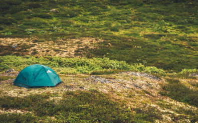 Tent Camping in the Wild