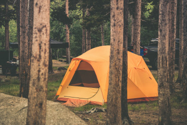Tent in the Forest Camping