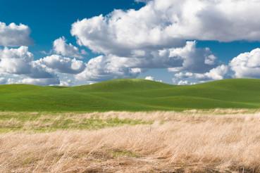 The Perfect Nature Landscape