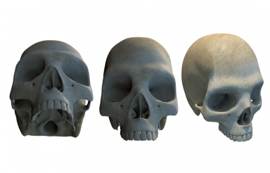 Three Different Skulls PNG
