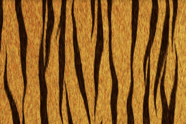 Tiger Coat - Tiger Fur