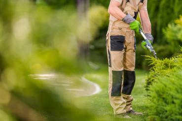 Topiary Garden Plants Trimming Job