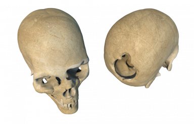 Two Broken Skulls PNG