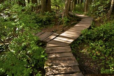 Two Ways Cross Trail