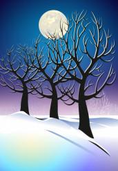 Vector Winter Night