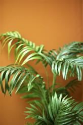 Vinyl Palm