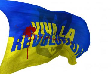 Viva La Revolution Flag