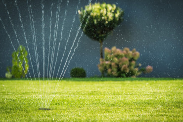 Water Garden Sprinkler