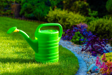 Watering Can in a Garden