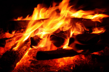 Wild Fireplace