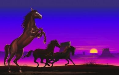 Wild Horses on the Prairie