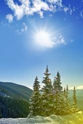 Winter Landscape Colorado