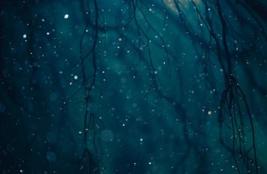 Winter Weather Night