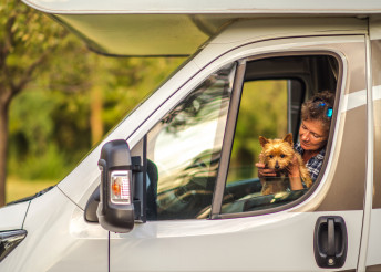 Woman Traveling With Her Dog Inside Camper Van