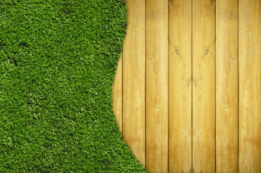 Wood Planks and Grass