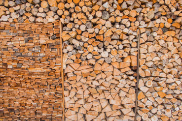Woodshed Full of Wood Logs