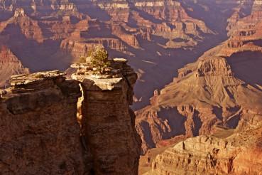 World Famous Canyon