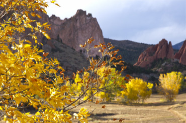 Yellow Colorado