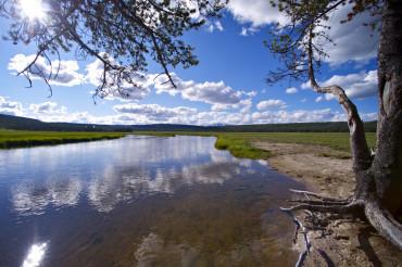 Yellowstone Gibbon River