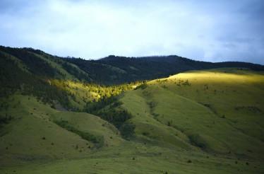Yellowstone Green Hills