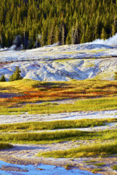 Yellowstone Harsh Conditions