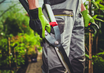 Male Worker Holding Gardening Hand Tools.