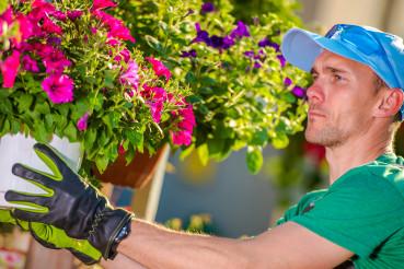 Garden Store Worker Hangs Flower Pots On Stands.