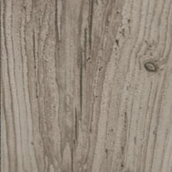 Bark Maple
