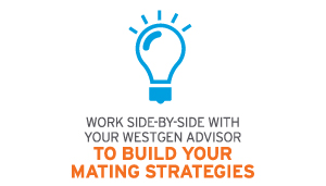 build-mating-strategies