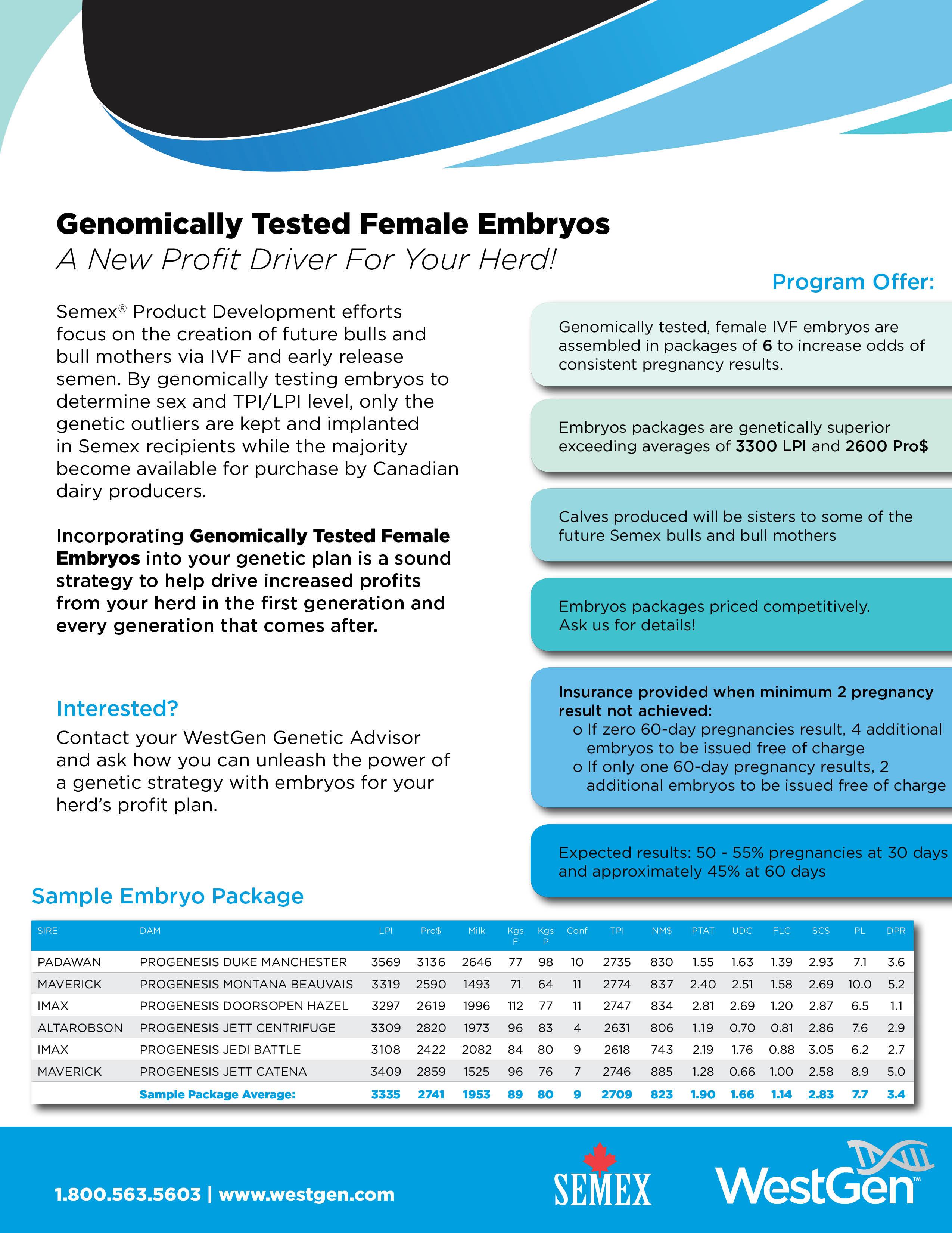 Embryo-Flyer_web