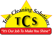 Website for True Cleaning Solutions, LLC