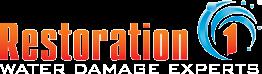 Website for Restoration 1 of Boca Raton