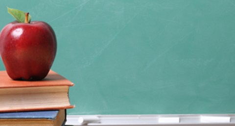 Teacher's Pet: Networking With Professors