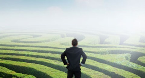 Finding Your Path in the Career Maze