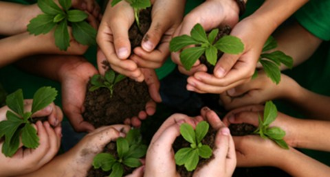 CSR: What is it, Anyway?