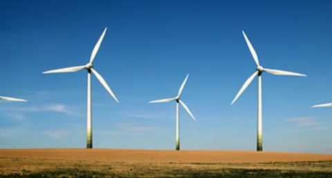 Renewable Energy Powers Job Growth