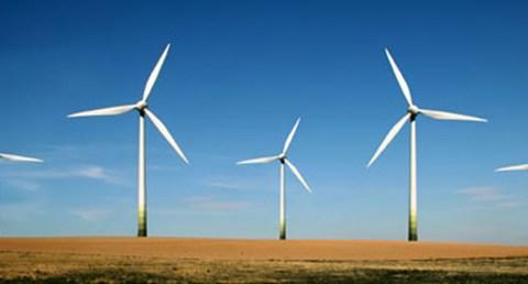 Renewable Energy Powers Job Growth