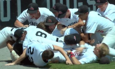 High School Baseball: Fairfield Defeats Mt. Carmel for Regional Title