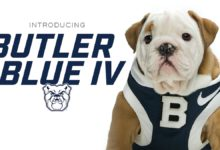 Photo of Butler's Next Bulldog Mascot, Blue IV Is Chosen