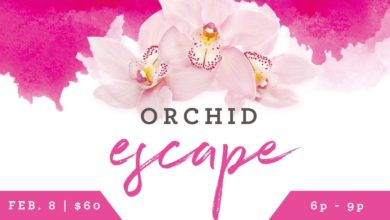 Photo of Mesker Park Zoo Hosting Annual Orchid Escape