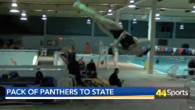 Photo of Trio of Panthers Diving at State